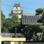 帰郷2日め(1390)