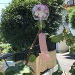 「方丈庭」風鈴の音(ね)、天使👼👼👼の歓声   1005