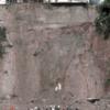 新人記者として 人生初の災害現場 (1135)