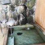 ちょっと信濃・上州の新緑温泉巡り① (1315)